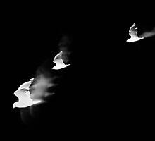 smoking birds by keoneandkenya