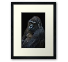 life is not allways funny! Framed Print
