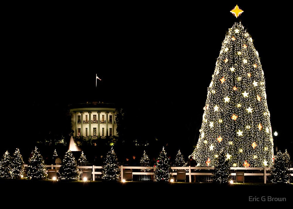 National Christmas Tree by Eric G Brown