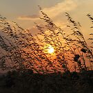 A sunset in Sarkoy by rasim1