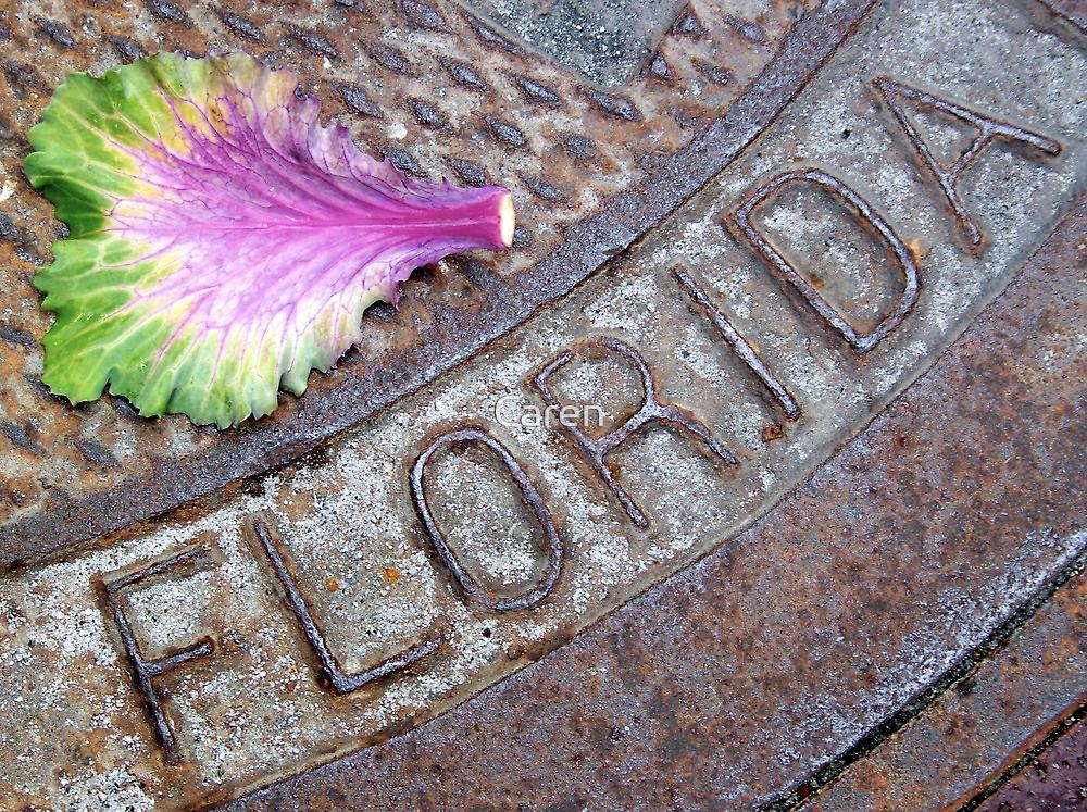 I Love Florida by Caren