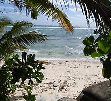 Cocos Island Beach by abbycat