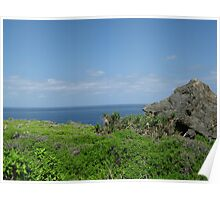 North-East point, Christmas Island Poster