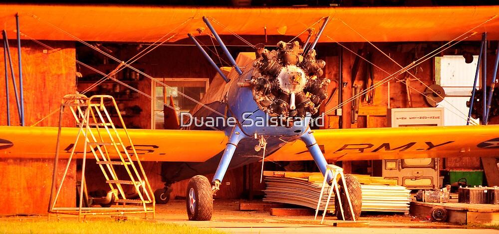 STEARMAN P-17, EARLY MORNING by Duane Salstrand