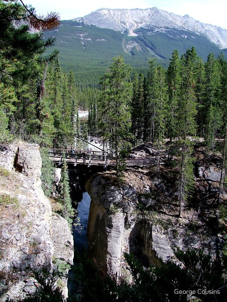 A Wilderness Bridge by George Cousins