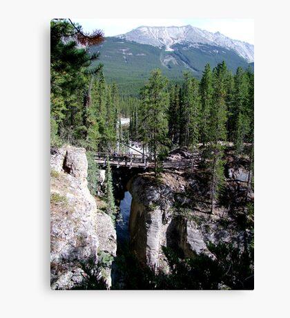 A Wilderness Bridge Canvas Print