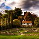 Country Estate.  by DaveBassett