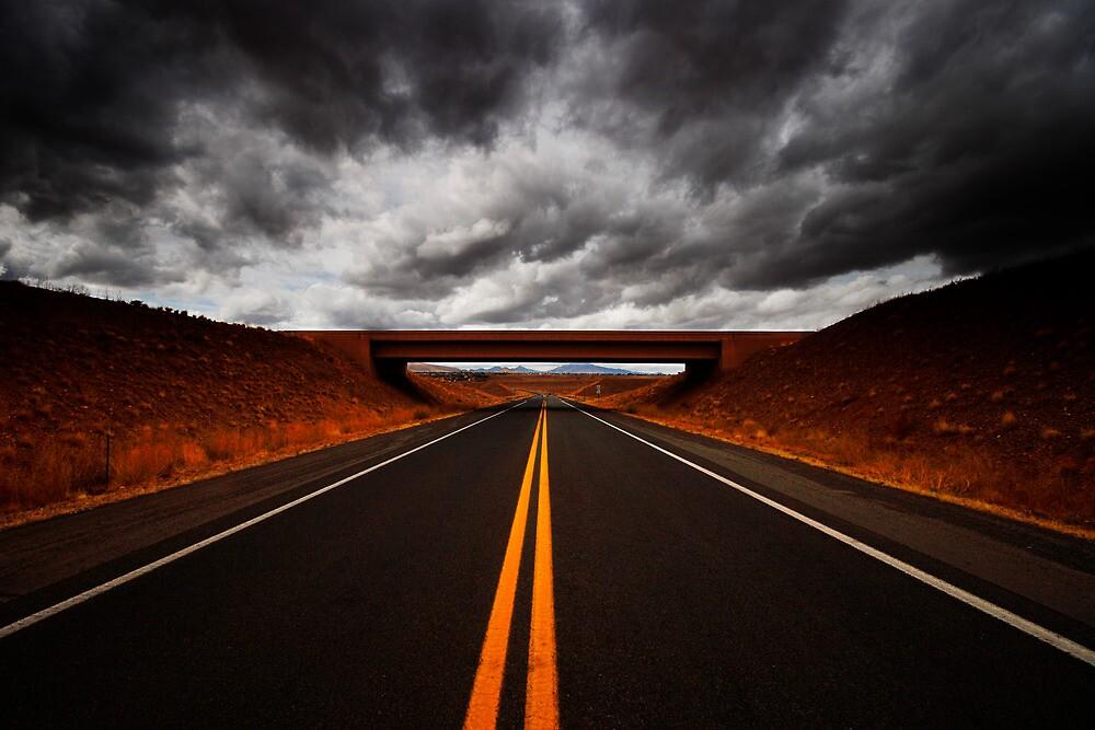 Thunder Road by Bob Larson