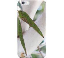Barossa Bush Leaves iPhone Case/Skin