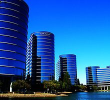 San Francisco Bay Area, Oracle Campus 2007 by Igor Pozdnyakov