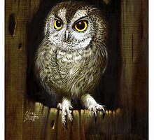 Screech Owl  by Elaine Bawden