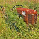 Tractor Relic by sundawg7