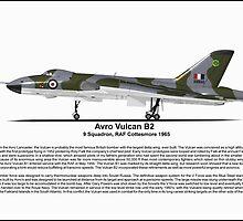 Avro Vulcan B2 Profile by coldwarwarrior