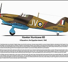 Hawker Hurricane IID Profile by coldwarwarrior