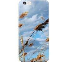 Any Which Way iPhone Case/Skin