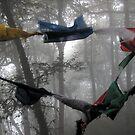 India - Darjeeling दार्जिलिंग by Thierry Beauvir