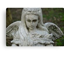 STONE WINGS Canvas Print