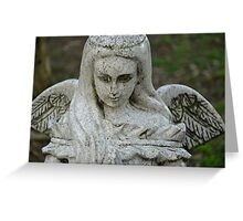 STONE WINGS Greeting Card