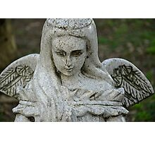 STONE WINGS Photographic Print
