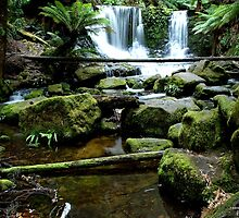 Horse shoe falls, Tasmania by Photo Galleria  Australia
