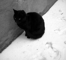 Black and White. by Vitta