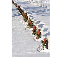 Christmas Wars Photographic Print