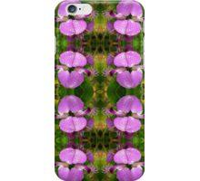 September Bush - Polygala myrtifolia iPhone Case/Skin