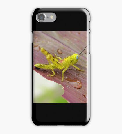 HDR Grasshopper iPhone Case/Skin