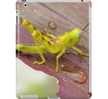 HDR Grasshopper iPad Case/Skin