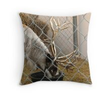 And After I Escaped From The North Pole... Throw Pillow