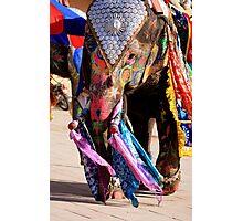 Elephant Ho... Ho... Ho... Photographic Print