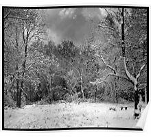 Hertford Heath - 1 (Winter) Poster