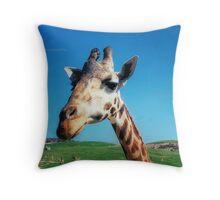 Giraffe HDR Throw Pillow