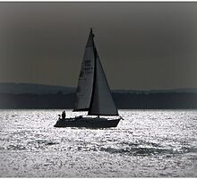 Coming Home by Morag Bates