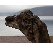Loch Ness - Is it Nessie...?? Photographic Print