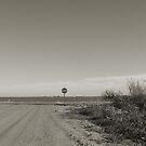 Open Road by NancyC