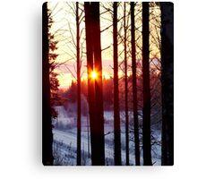 Cold Sun Canvas Print
