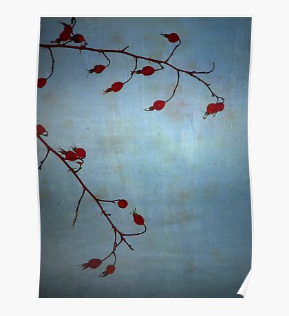 Red Berries, Blue Sky 2 Poster