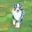 Running ~ Australian Shepherd ~ Oil Painting by Barbara Applegate