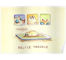 Selfie Trouble Poster