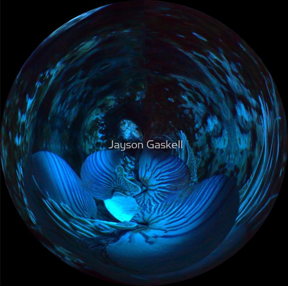Nautilus World by Jayson Gaskell