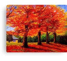 New England Maple Row Canvas Print