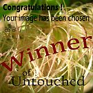 Untouched Winner Challenge Entry by Iva Penner