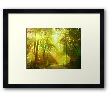 Only in my dreams Framed Print