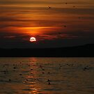 Sunset by DebYoung