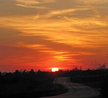 Sunset Over The Country Road  by Linda Miller Gesualdo