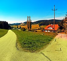 Countryside road with two options by Patrick Jobst