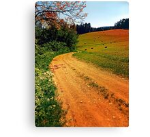 Hiking trail through springtime nature Canvas Print