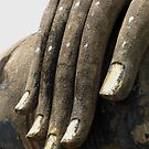 Hand of Buddha by Amy Hale