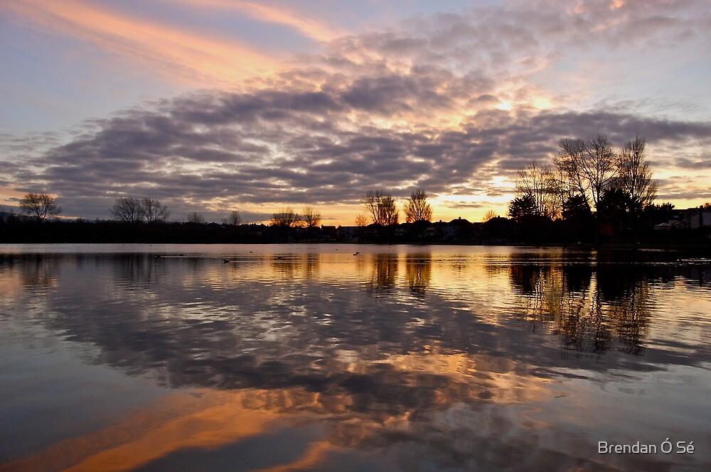 The Lough at sunset. Cork, Ireland  by Brendan Ó Sé